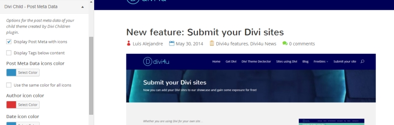 divi-children-customize-postmeta