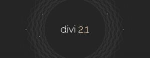 divi-21