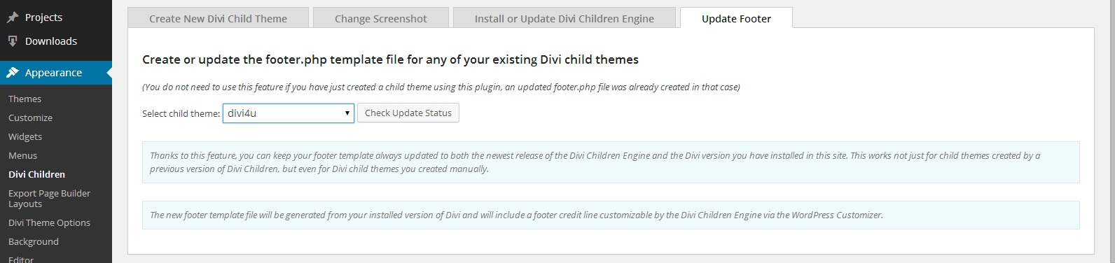 customize-divi-update-divi-child-footer