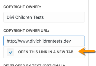 Divi Children 2.0.9 footer credits open link