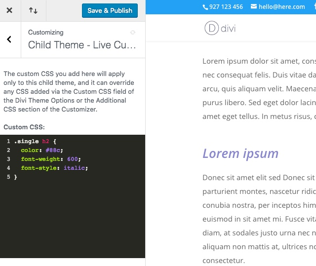 Divi-Children-3-custom-css