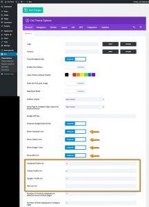Divi social icons theme options